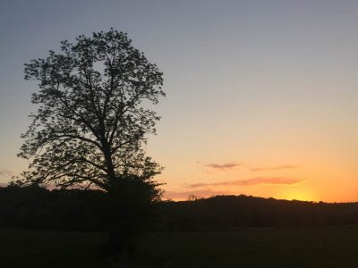 sunset over field - washington county guide